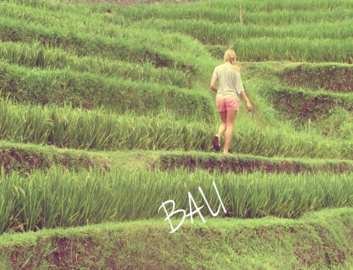 BALI: Off the Beaten Path