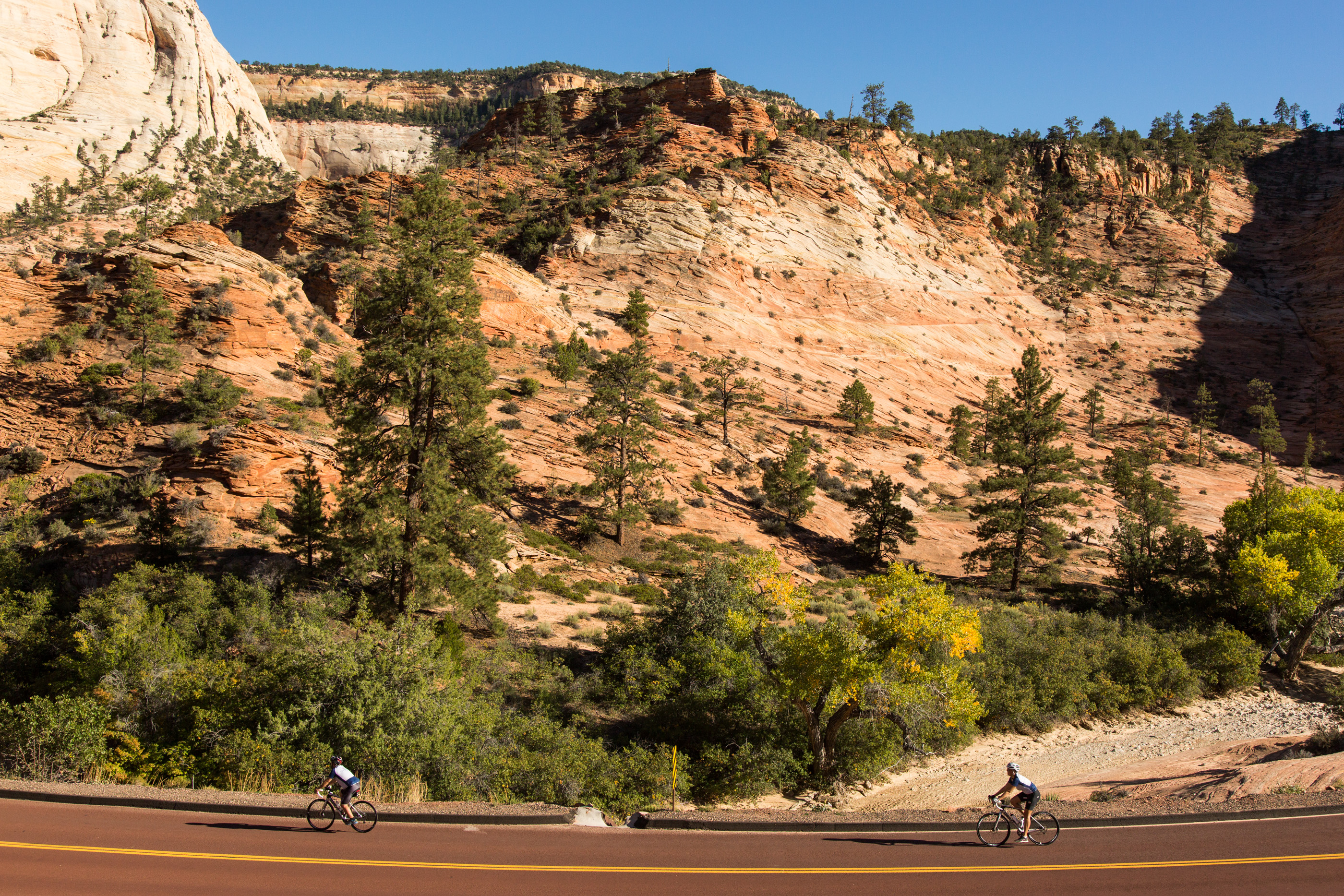 cycling zion national park