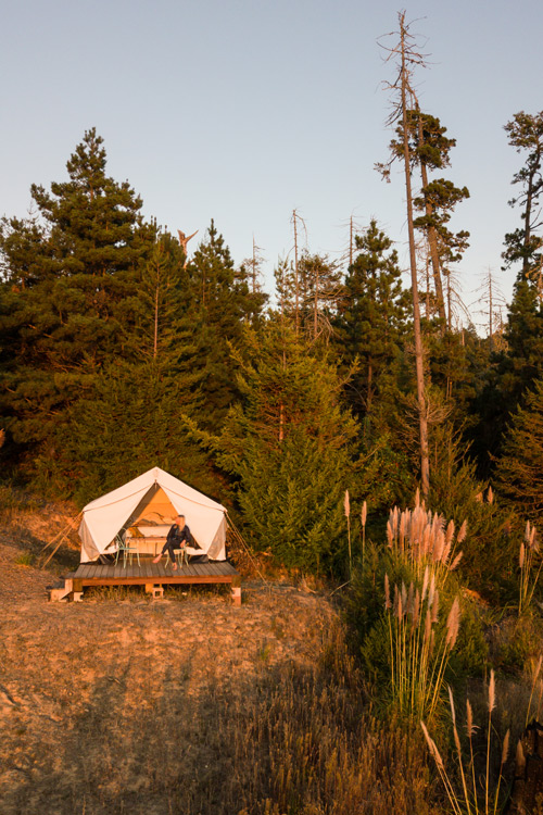 Glamping in Norther California with Terra glamping. Solo travel lessons of turning 36 years old.