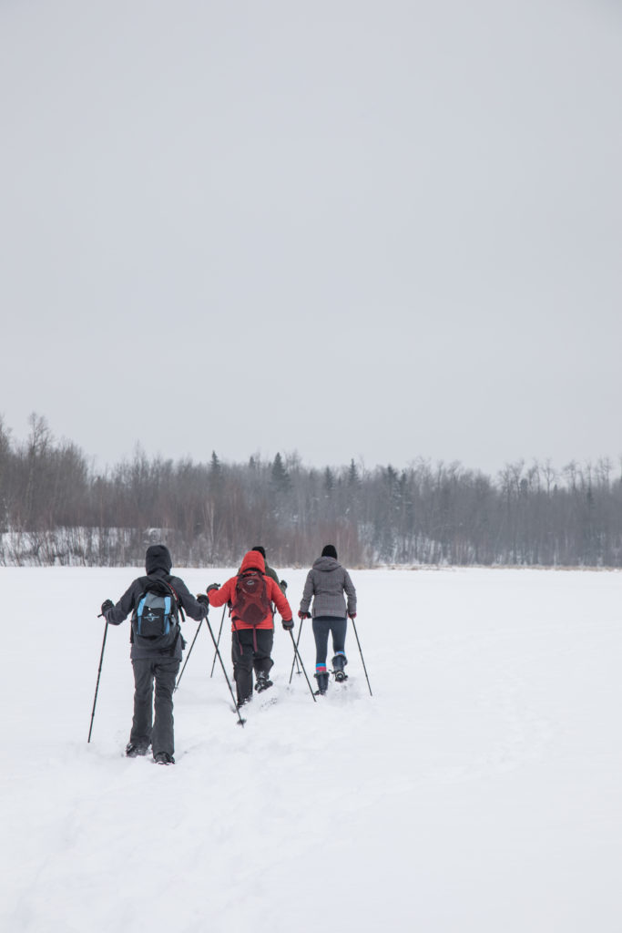 Snowshoeing at elk island with group.