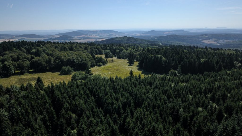 Drone aerial of forest in Germany